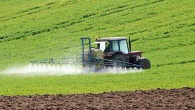 Photo of Casablanca-Settat -El Jadida :prémices d'une bonne campagne agricole